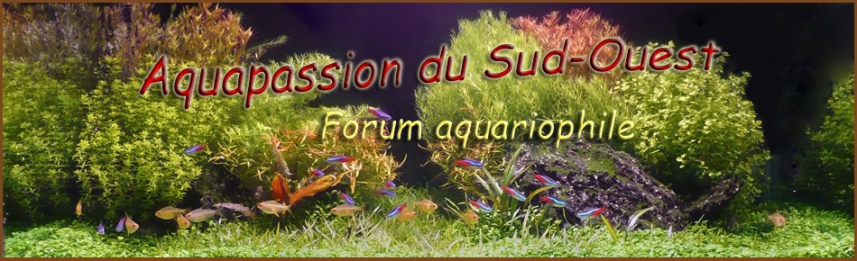 FORUM AQUAPASSION DU SUD-OUEST