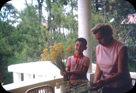 1962 La maison du Cap dans Le jardin des souvenirs 61067610