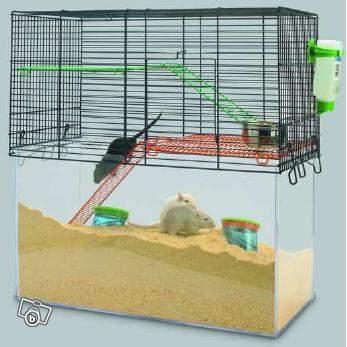 re vos cages aquariums et autres installations page 18. Black Bedroom Furniture Sets. Home Design Ideas