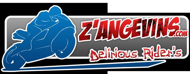 Forum moto 49 : les Z'Angevins : Délirious Rider's