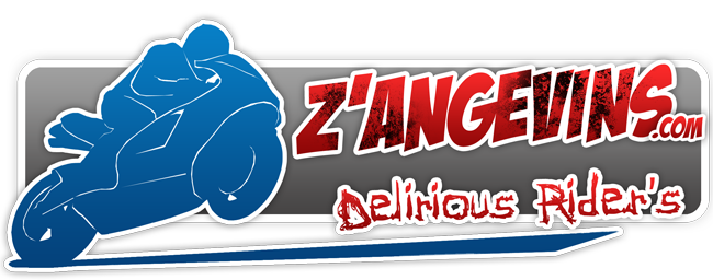 Forum moto 49 : les Z'Angevins : D�lirious Rider's