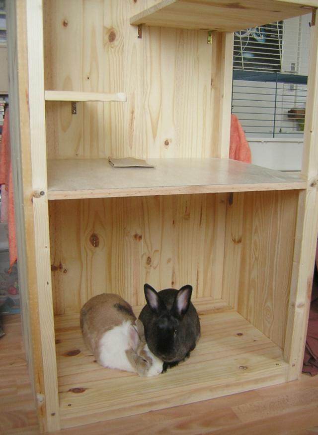 Je voudrais fabriquer une cage moins bruyante for Abreuvoir lapin fait maison