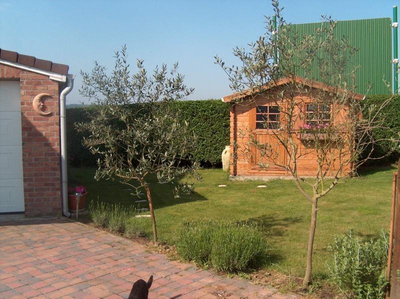 Relooking extreme pour mon cabanon de jardin - Relooking terras ...