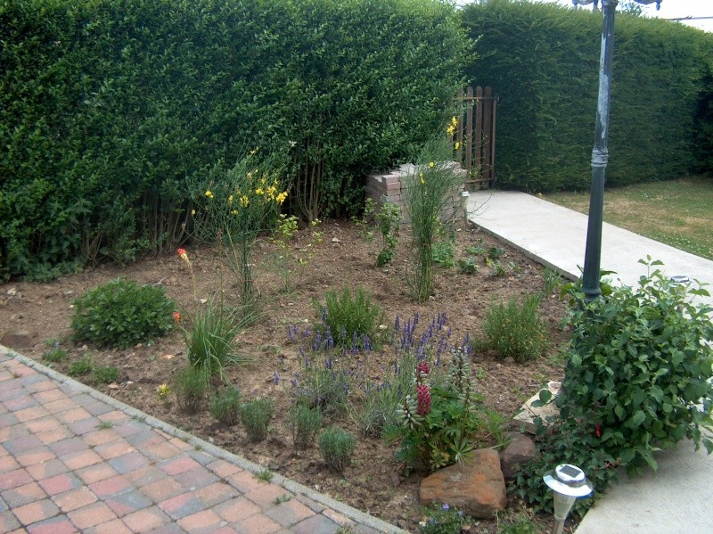 Relooking Jardin D 39 Ancolies Page 5
