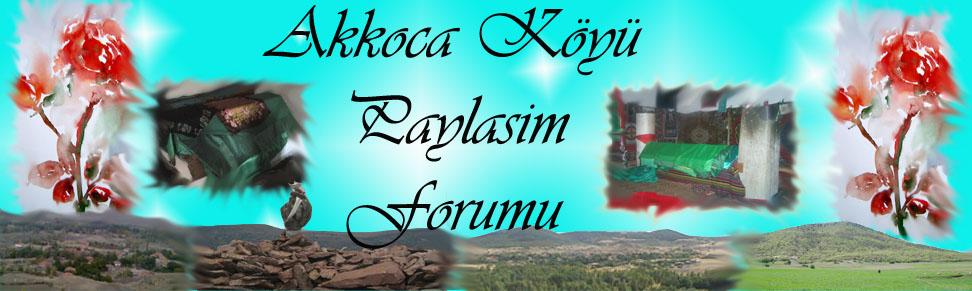 Akkoca Köyü Forum'u