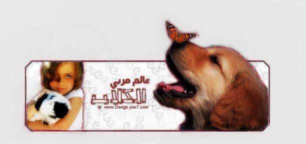 عالم مربي الكلاب