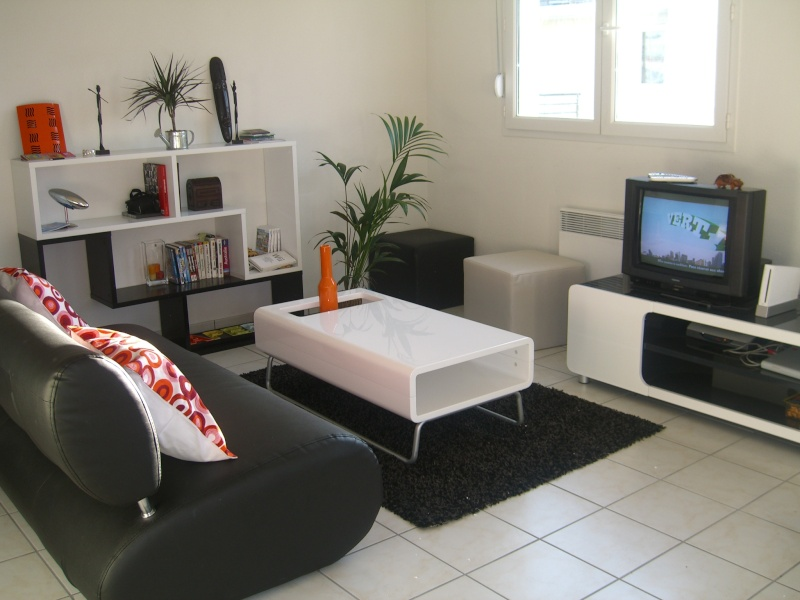 Id e pour une r novation d 39 un appartement for Meuble derriere canape