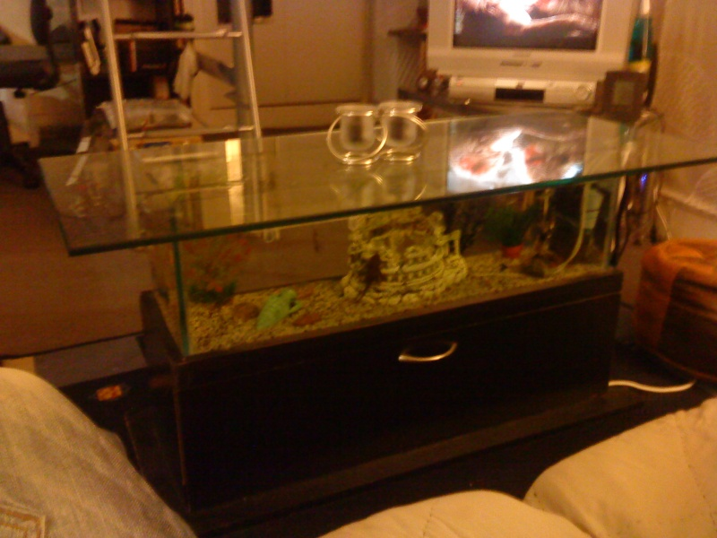 fabrication dune table basse aquarium. Black Bedroom Furniture Sets. Home Design Ideas