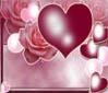 القسم العام قسم الحب والدردشة