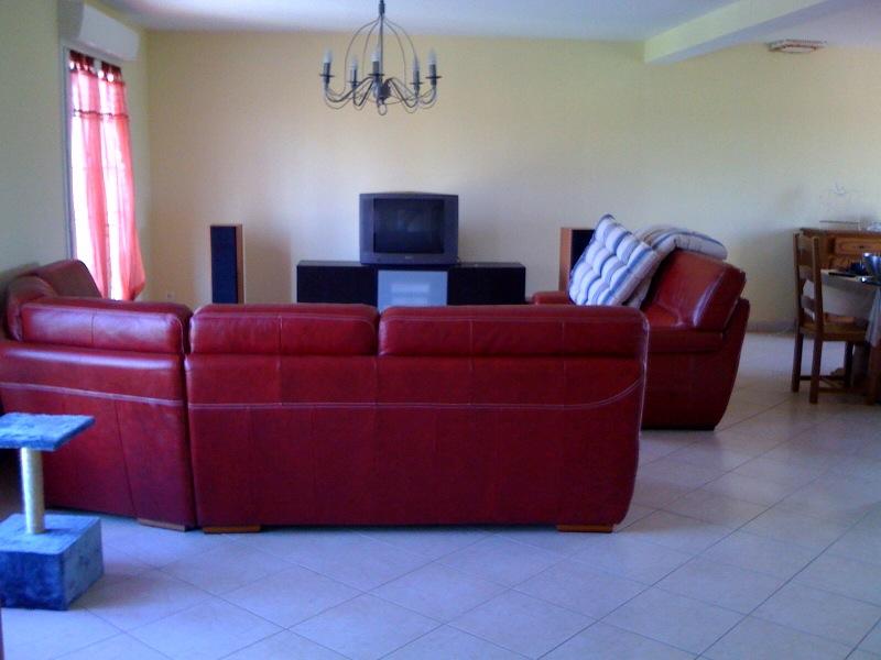 recherce id es couleur tapisseries pour canap cuir rouge bo. Black Bedroom Furniture Sets. Home Design Ideas